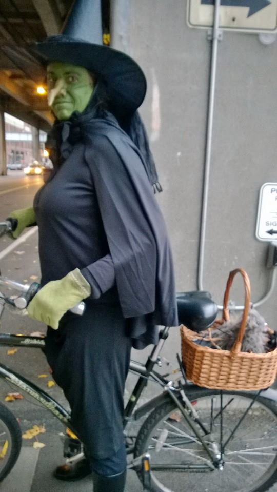The Wicked Witch Rides A Bike Bike Hugger