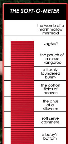 vagisoft