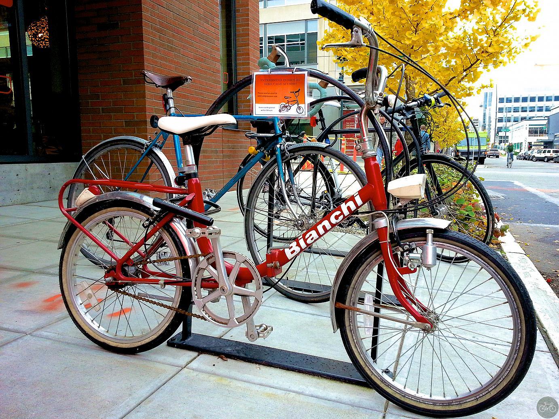 Amazon Bikes