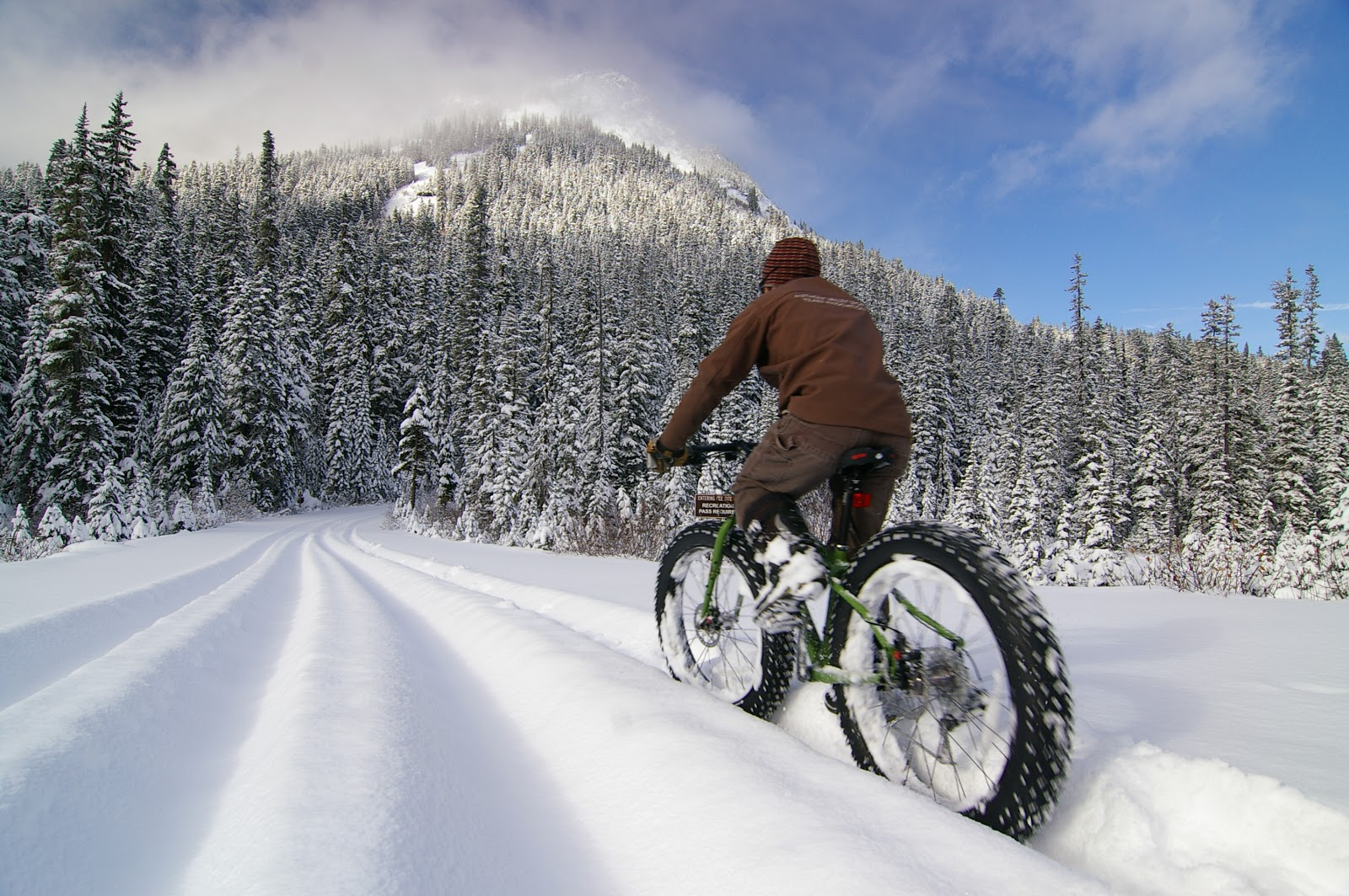 fat bikes in the snow