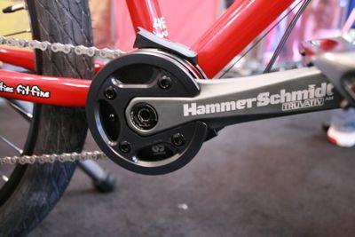 Hammer Schmidt 1.jpg