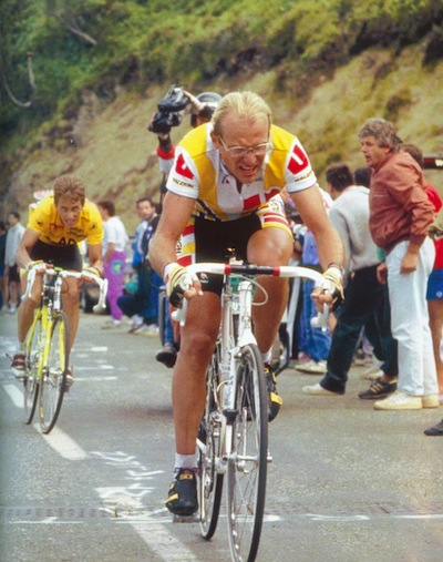 lemon_fignon.jpg
