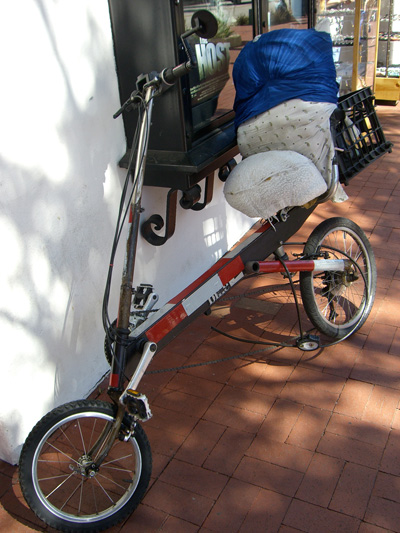sba_recumbent_small.jpg