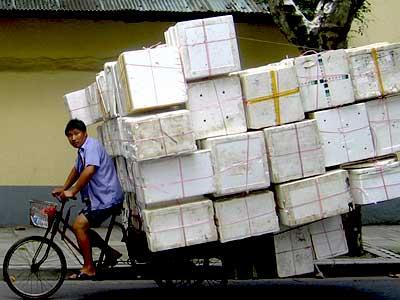 shanghai_cargo.jpg