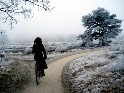 snow_woman.jpg