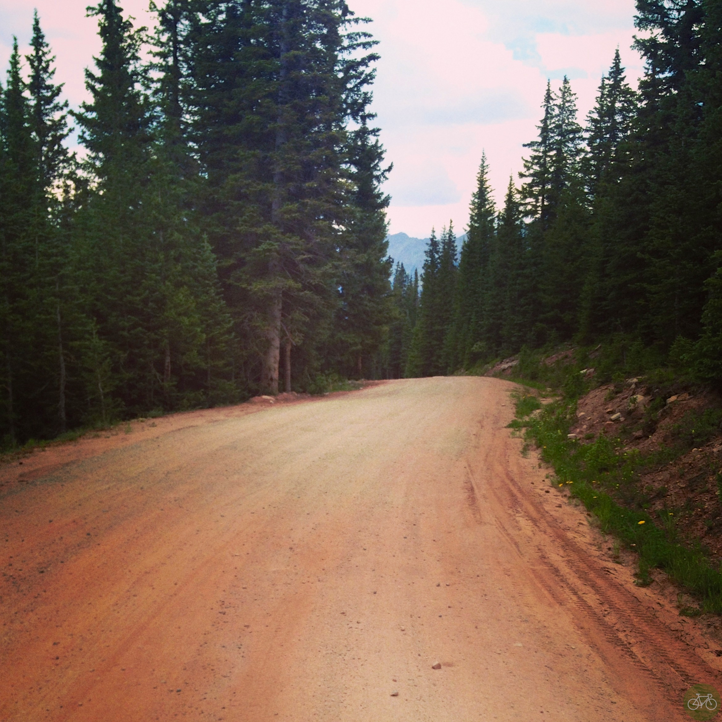 Mountain Bikes, Marmots, and Fire Roads