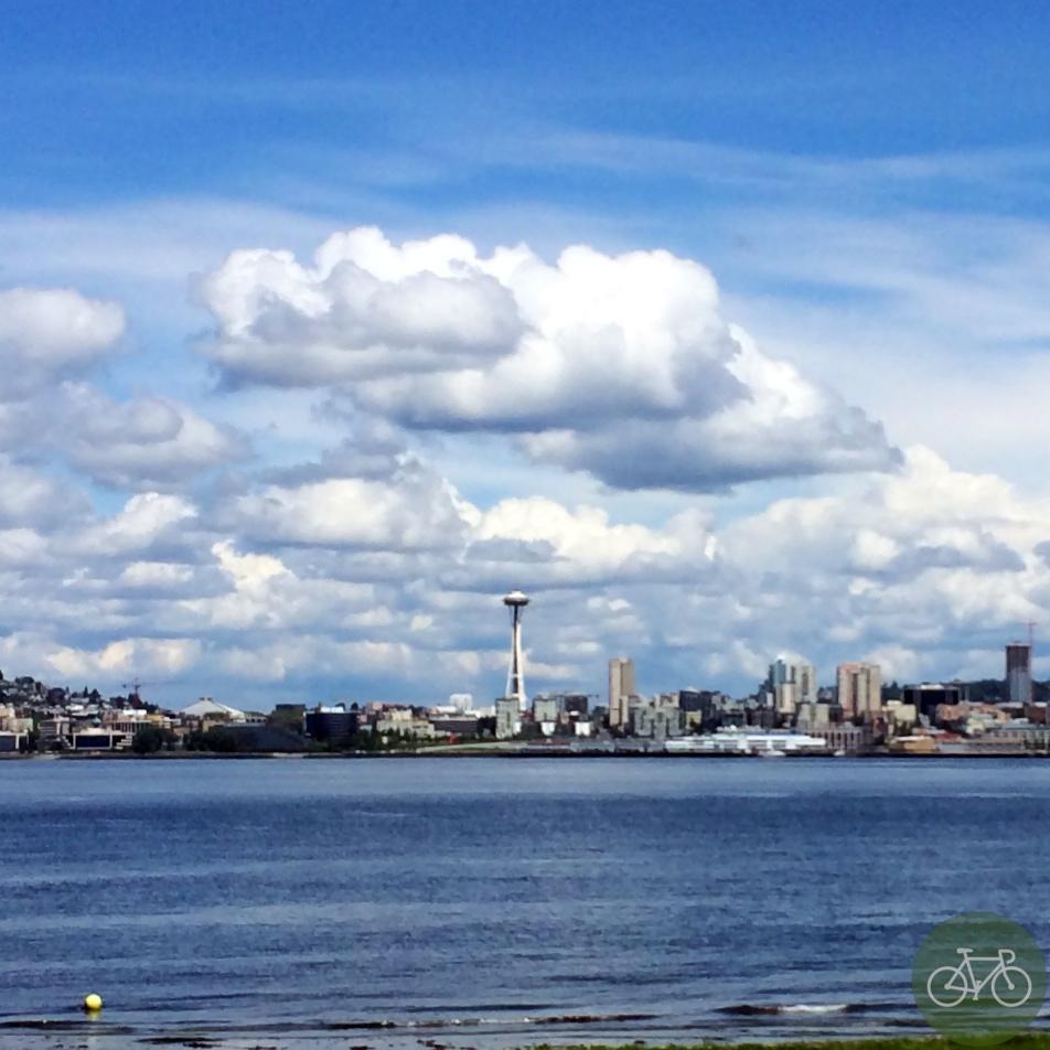 Seattle Skyline 14
